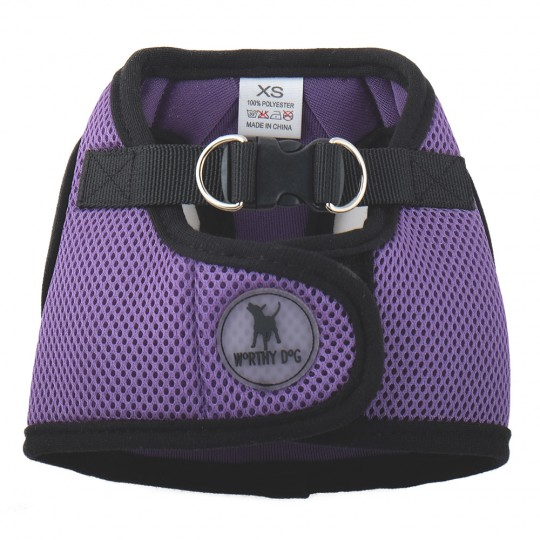 Harness Sidekick-Purple