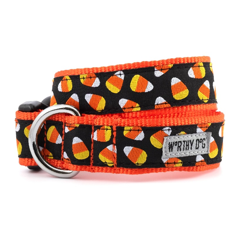 Collar-Candy Corn