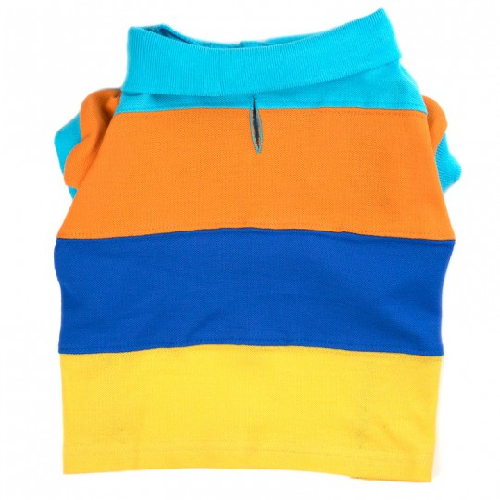 Polo-Primary Color Block*