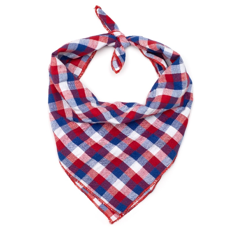 Bandana-Red White Blue Check (Tie)
