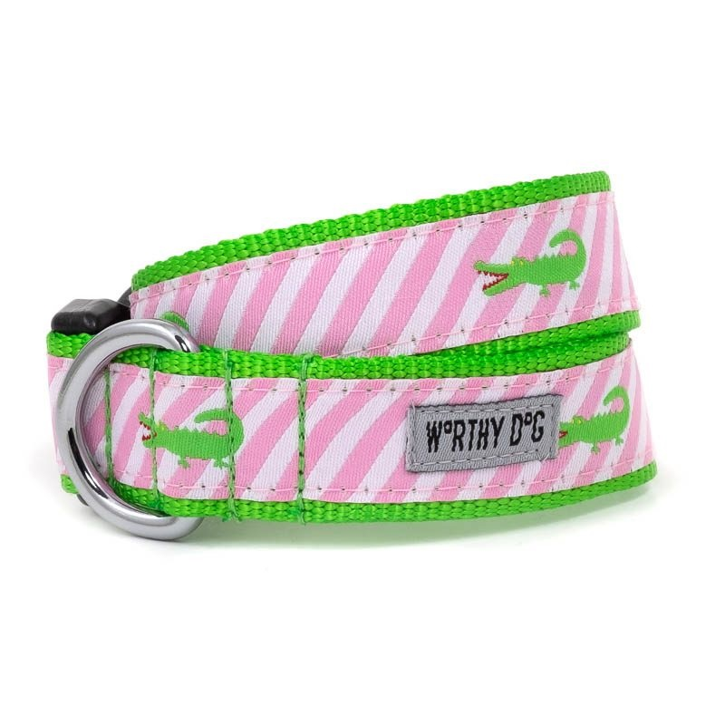 Collar-Pink Stripe Alligator