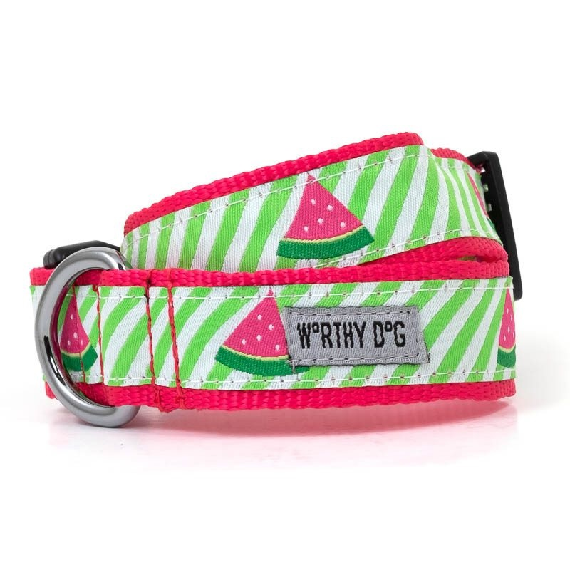 Collar-Green Stripe Watermelon
